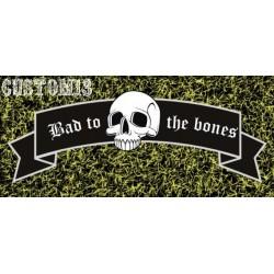vinilo bad to the bones