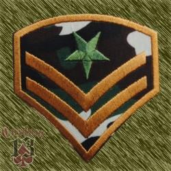 Parche galón estrella verde