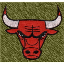 Parche bordado NBA, bulls
